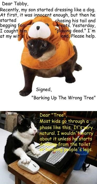"Dear Tabby-""Barking Up The Wrong Tree"""