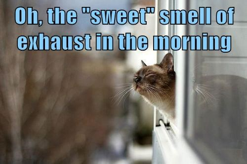 "Oh, the ""sweet"" smell of exhaust in the morning"