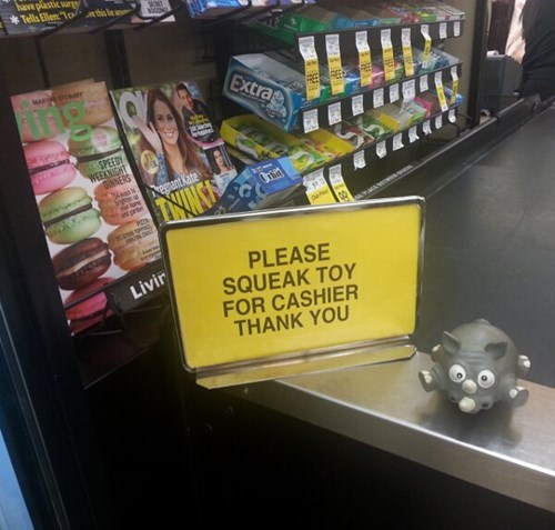cashier,dogs,squeaky toy