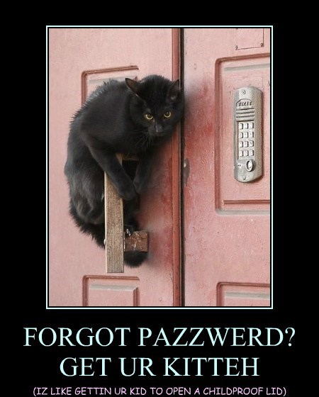 FORGOT PAZZWERD? GET UR KITTEH
