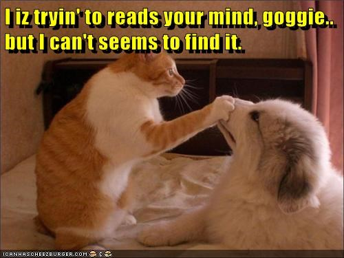 I iz tryin' to reads your mind, goggie.. but I can't seems to find it.