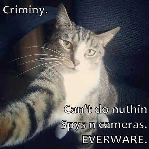 Criminy.   Can't do nuthin                                                   Spys n cameras.                                                   EVERWARE.
