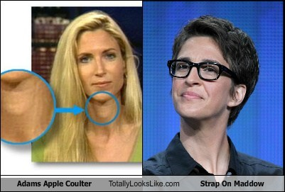 Adams Apple Coulter Totally Looks Like Strap On Maddow