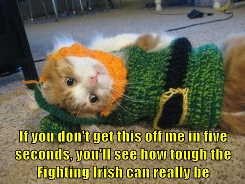 If you don't get this off me in five seconds, you'll see how tough the Fighting Irish can really be