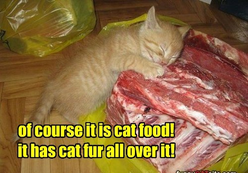 of course it is cat food! it has cat fur all over it!