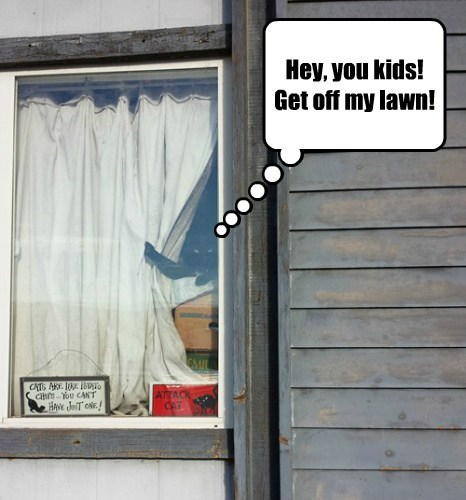 Hey, you kids!   Get off my lawn!