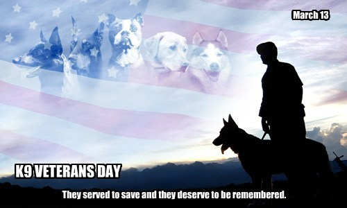 K9 VETERANS DAY