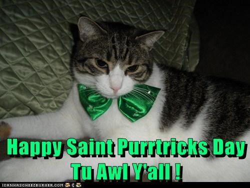 Happy Saint Purrtricks Day Tu Awl Y'all !