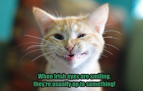 When Irish eyes are smiling, they're usually up to something!