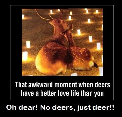 Learn About Deer