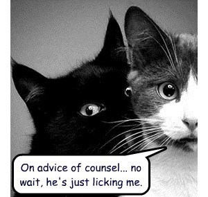 On advice of counsel... no wait, he's just licking me.