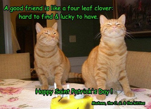 A good friend is like a four leaf clover: hard to find & lucky to have.