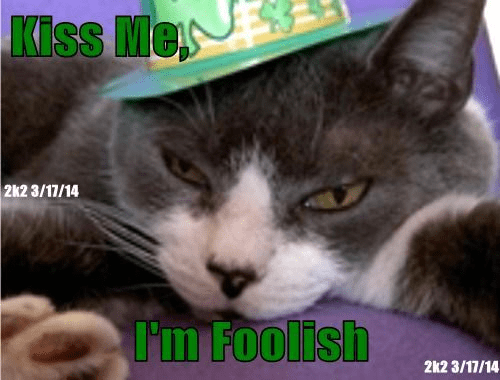 A Hapity St. Patrick's Day to Cheez Frenz Ebrywhere