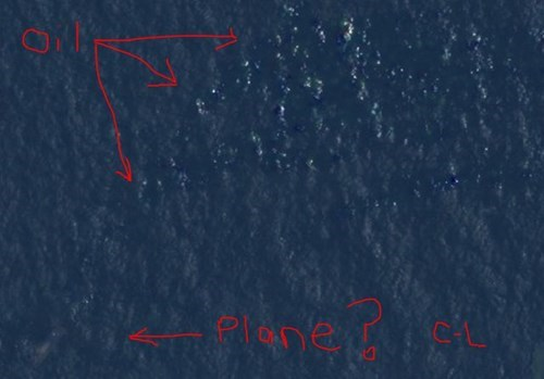 Courtney Love Claims to Have Found Malaysia Airlines flight 370