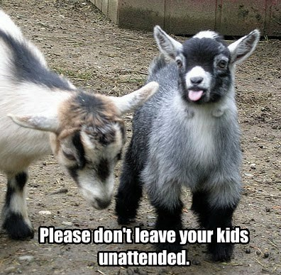 Please don't leave your kids unattended.