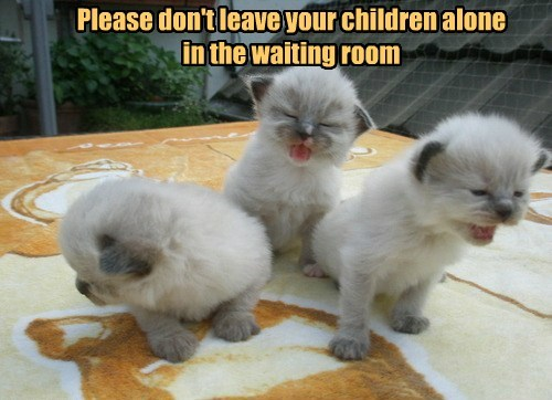 Please don't leave your children alone  in the waiting room