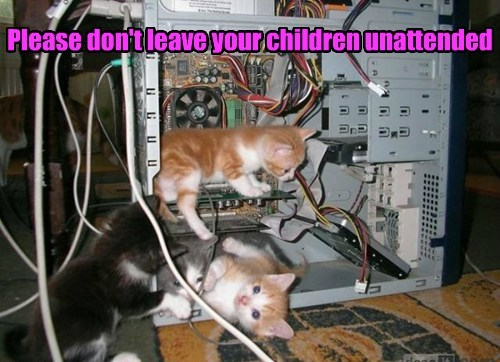 Please don't leave your children unattended