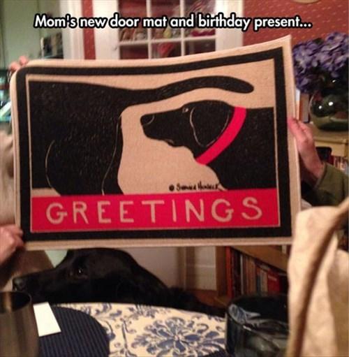 dogs,birthday,doormat,funny
