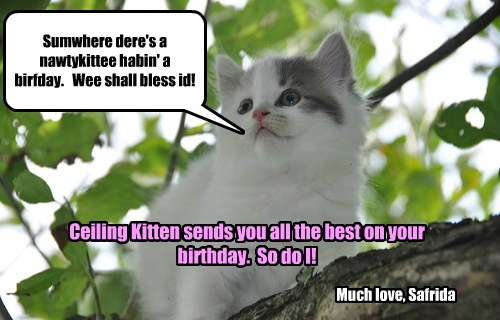 Lotsa lubs on your b-day!