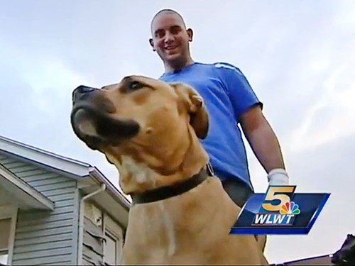 Rescued Dog Returns the Favor by Saving His Family from House Fire