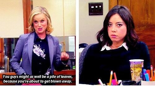 bad jokes,puns,parks and recreation