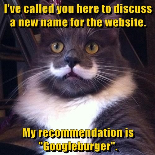 "I've called you here to discuss a new name for the website.   My recommendation is ""Googleburger""."