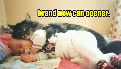 brand new can opener.