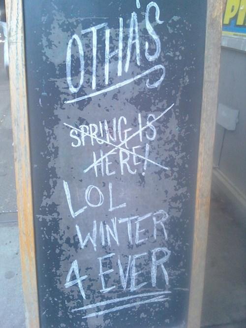 spring,seasons,winter