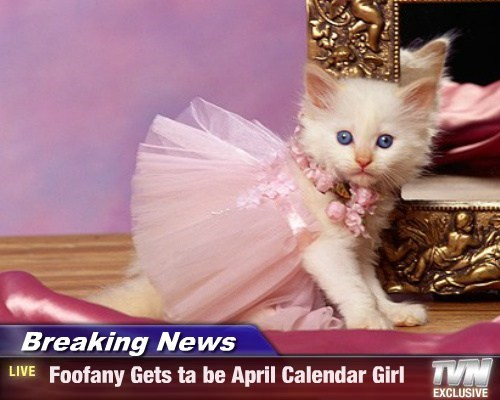 Breaking News -  Foofany Gets ta be April Calendar Girl