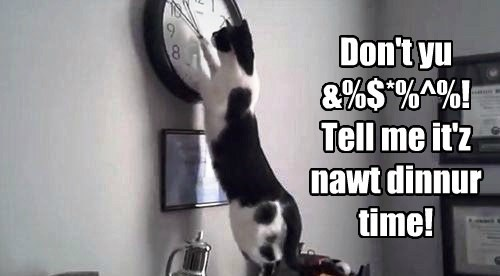 Don't yu &%$*%^%! Tell me it'z nawt dinnur time!
