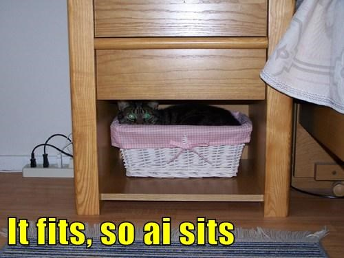 It fits, so ai sits