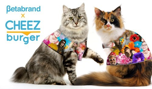 "The ""Clothes for Cats Collection"" Finally Gives Kitties a Chance to Dress Like Humans!"