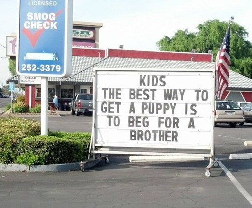 sign,kids,brother,puppy,bargaining,parenting,g rated