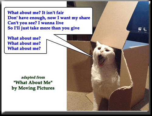 """A Barbed Question"" (adapted from ""What About Me"" by Moving Pictures)"