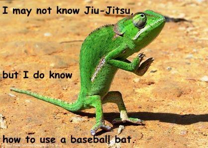 I may not know Jiu-Jitsu, but I do know  how to use a baseball bat.