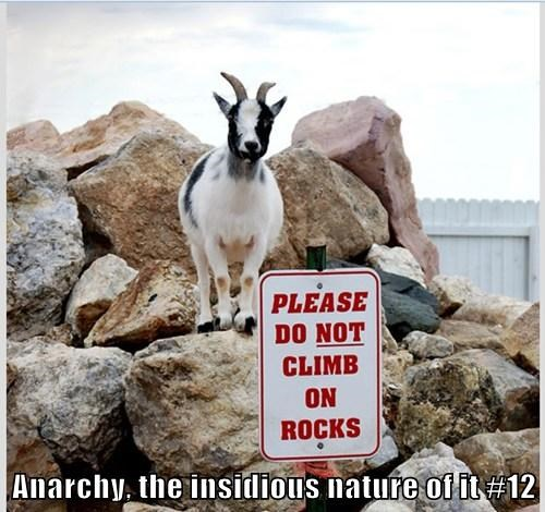 Anarchy, the insidious nature of it #12