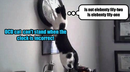 OCD cat  can't stand when the clock is incorrect