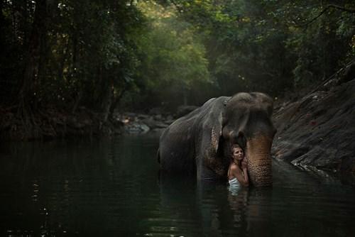 Russian Photographer Katerina Plotnikova Takes Stunning Photos With Real Animals