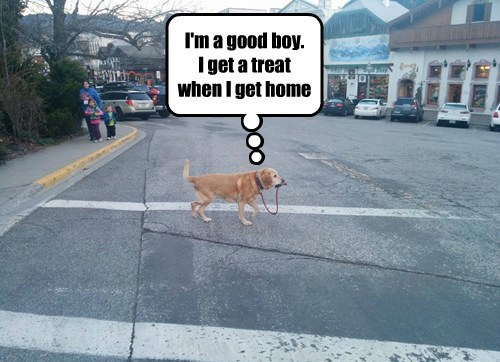 Oh Yeah!  I Carry My Own Treats!