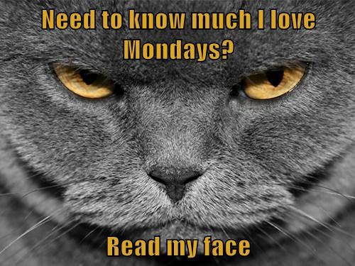 Need to know much I love Mondays?  Read my face