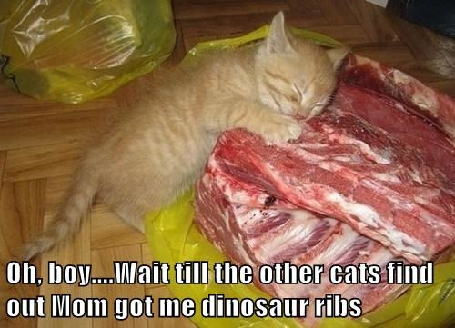 Oh, boy....Wait till the other cats find out Mom got me dinosaur ribs