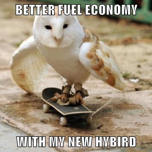 BETTER FUEL ECONOMY  WITH MY NEW HYBIRD