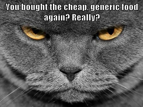 You bought the cheap, generic food again? Really?