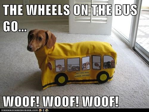 Everything on This Bus Goes Woof, Woof, Woof...