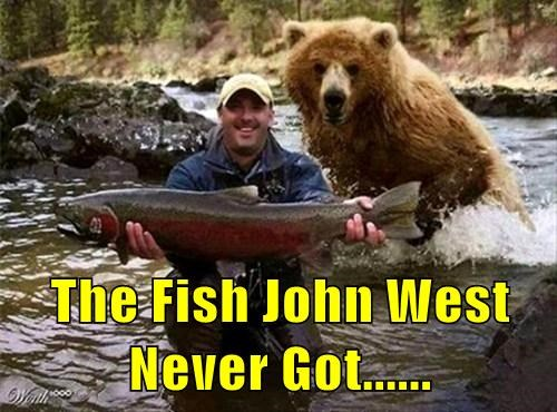 The Fish John West Never Got......