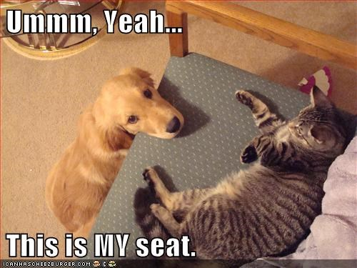Correction...This WAS Your Seat