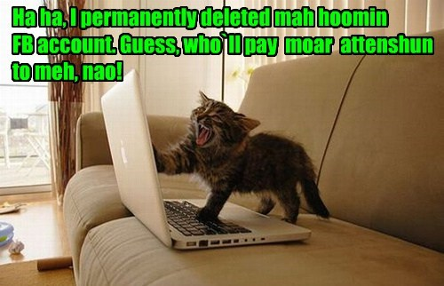 Ha ha, I permanently deleted mah hoomin  FB account. Guess, who`ll pay  moar  attenshun to meh, nao!