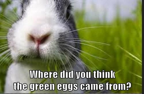 Where did you think                                                                     the green eggs came from?