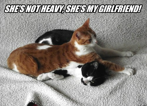SHE'S NOT HEAVY, SHE'S MY GIRLFRIEND!