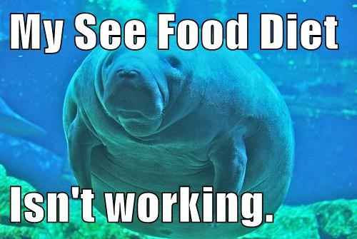 diet,puns,manatee